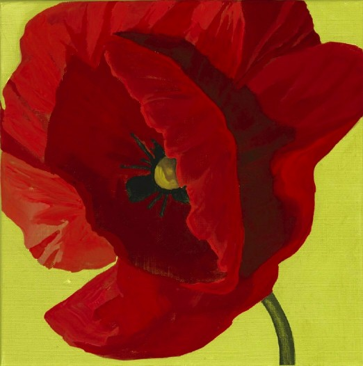 "poppy, acrylic on canvas, 12 by 12"", 2009"
