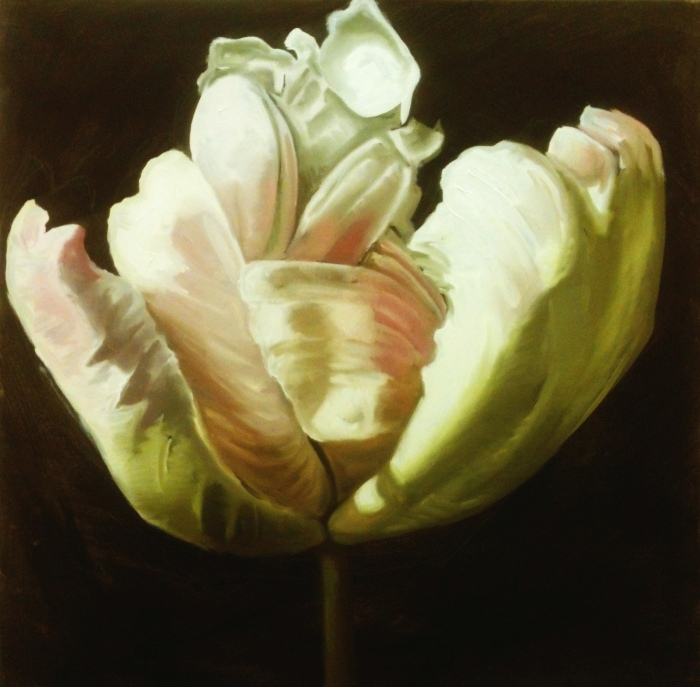Tulip in the Dark 2, oil, 24x24 inches, 2014