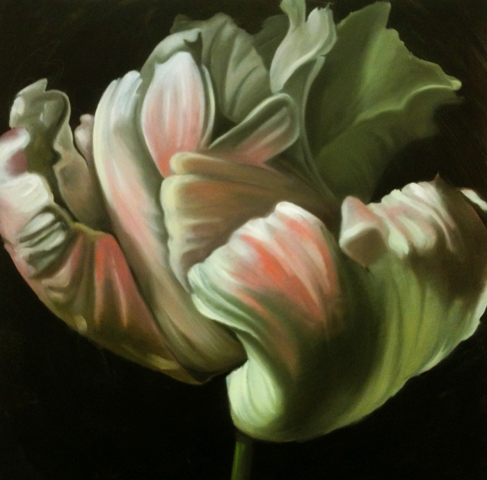 Tulip in the Dark 1, oil, 24x24 inches, 2014