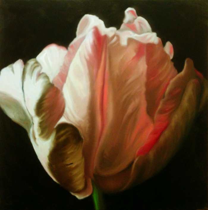 Tulip in the Dark 3, oil, 24x24, 2014